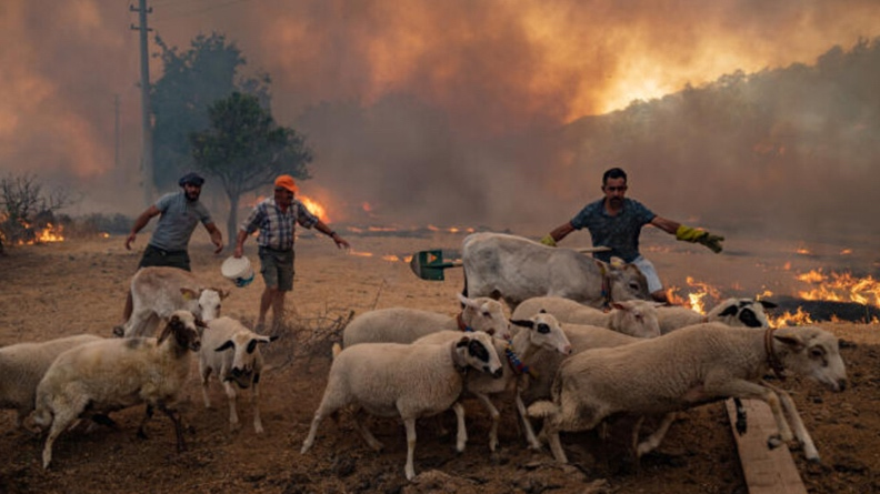 Οι φωτιές συνεχίζονται στο Ντερσίμ - οι ντόπιοι ισχυρίζονται ότι οι Τούρκοι στρατιώτες έβαλαν τις φωτιές