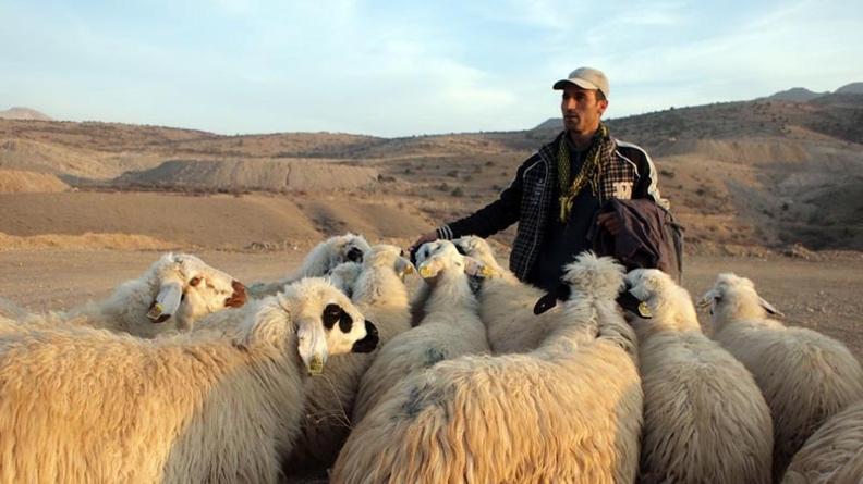 Οι Κούρδοι νομάδες επιστρέφουν νωρίς από τα βοσκοτόπια