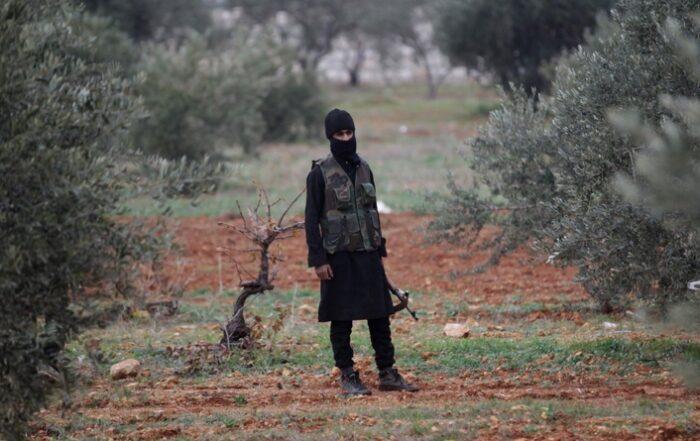 Το τουρκικό κράτος και οι μισθοφόροι του συνεχίζουν να κόβουν και να πουλούν τα δέντρα του Κουρδιστάν
